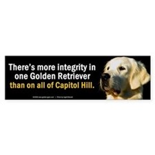 """Integrity"" Bumper Bumper Sticker"