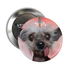 """Cool Chinese cresteds 2.25"""" Button (100 pack)"""