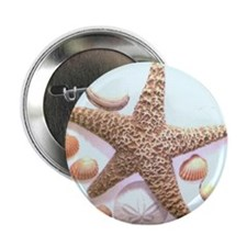 "Sea Shells 2.25"" Button"