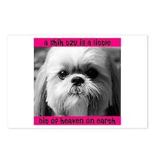 Shih Tzu Heaven Postcards (Package of 8)