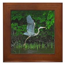 Heron taking flight Framed Tile