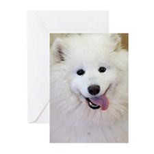 Samoyed Greeting Cards (Pk of 20)