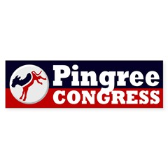 Re-Elect Chellie Pingree Bumper Sticker
