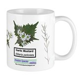 Garlic Mustard Mug