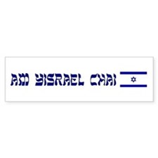 Bumper Sticker (10 x 3)