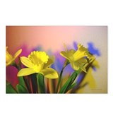 Chromatic Daffodil Shadows 15 Postcards (8)