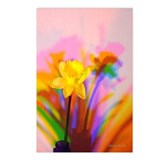 Chromatic Daffodil Shadows 181 Postcards (8)