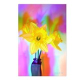 Chromatic Daffodil Shadows 242 Postcards (8)