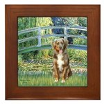 Bridge-Aussie Shep (#5) Framed Tile