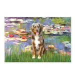 Lilies2-Australian Shep (#5) Postcards (Package of