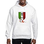 Italian Soccer Hooded Sweatshirt