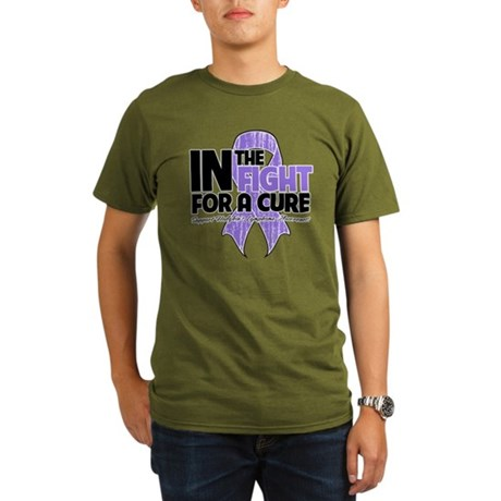 InTheFightForaCureHodgkins Organic Men's T-Shirt (