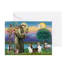 St Francis (W) - 2 Shelties (D&L) Greeting Cards (