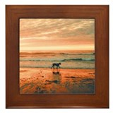 Great Dane Sunset Beach Framed Tile