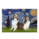 Starry / Two Shelties (D&L) Postcards (Package of