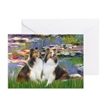 Lilies #2 / Two Shelties Greeting Cards (Pk of 20)