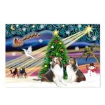 Xmas Magic / 2 Shelties (dl) Postcards (Package of