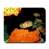 Pufferfish Mousepad