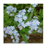 Art Tile. Forget Me Not Flower Blossoms