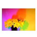 Chromatic Daffodil Shadows 110 Postcards (8)