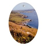 Irish landscape picture Oval Ornament Co. Galway