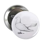"Flying Oriental Roller Pigeon 2.25"" Button (1"