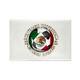 Cool Bicentenaria Rectangle Magnet (100 pack)