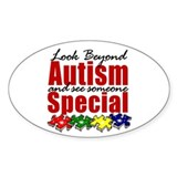 Look Beyond Autism2 Decal