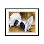Saddle Fantails Framed Panel Print