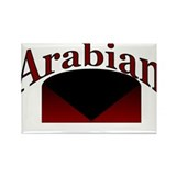 Arabian Rectangle Magnet (10 pack)