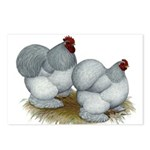 Cochins: Self Blue Postcards (Package of 8)
