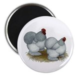"Cochins: Self Blue 2.25"" Magnet (100 pack)"