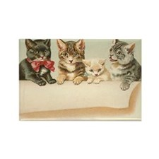 Four Cats Rectangle Magnet