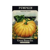 Pumpkin antique seed packet Rectangle Magnet