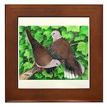 Ringneck Doves Framed Tile