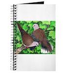 Ringneck Doves Journal