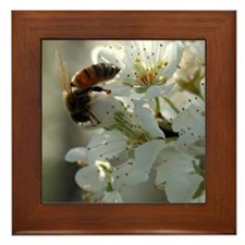 Bee Blossom Framed Tile