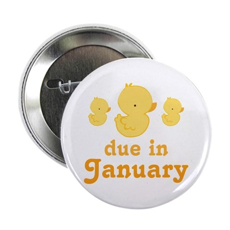 "Baby Duck January Maternity Date 2.25"" Button"