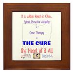 Cure in Ohio Framed Tile