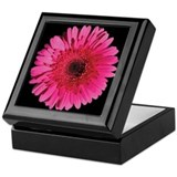 Red Gerbera Daisy Keepsake Box