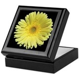 Yellow Gerbera Daisy Keepsake Box