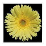 Yellow Gerbera Daisy Tile Coaster