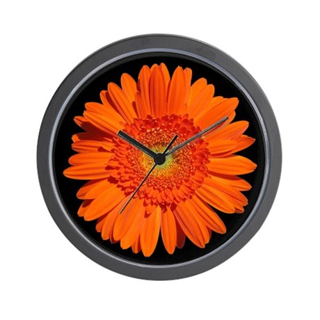 ... Pictures orange gerbera wallpaper 1024x576 orange gerbera background