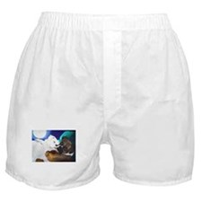 Busted Boxers Boxer Shorts