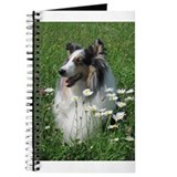 Blue Merle Journal