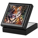 Tiger Tiger Keepsake Box