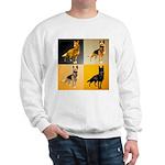 Shepherd Squares Sweatshirt