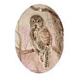 Great Gray Owl Oval Ornament