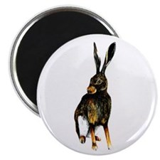 "WILDLIFE IMAGES 2.25"" Magnet (10 pack)"