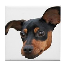 MinPin Tile Coaster